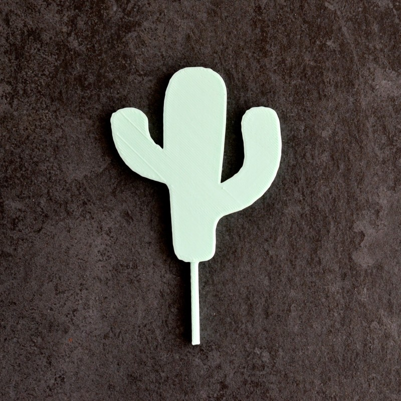 Cactus Cake Topper - Cupcake Topper - La Boîte à Cookies