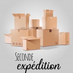 Seconde expédition