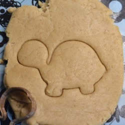 Little Turtle cookie cutter