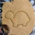 Little Turtle cookie cutter