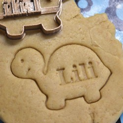 Little Turtle cookie cutter with name